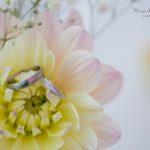 alliances fleur 77